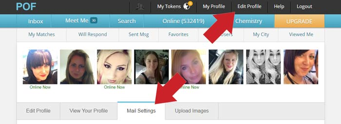 Get a pof free upgrade with this simple hack for Plenty of fish search without registering