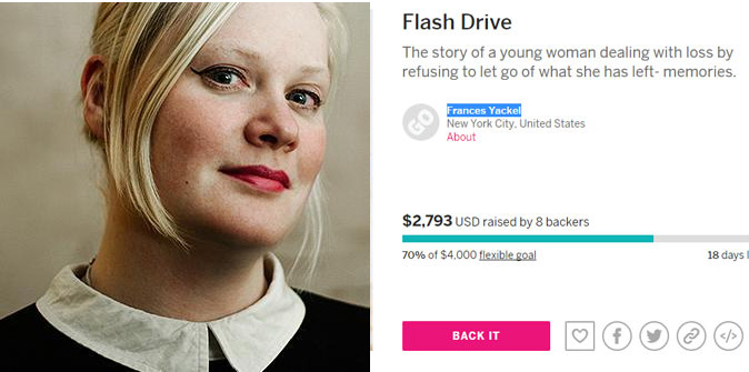 Indiegogo image example